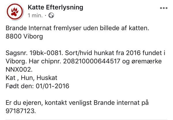 Brande Internat fremlyser sort/hvid hunkat