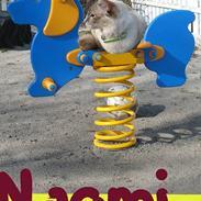 Balineser Naomi R.I.P