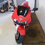 Honda CBR 900 RR Fireblade (919 cc)