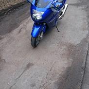 Honda CBR XX1100 SuperBlackbird