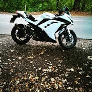 Kawasaki Ninja 300