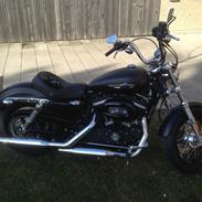 Harley Davidson Sportster xl 1200 custom