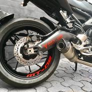 "Yamaha MT-09 ""BAGHJULS KONGEN II"""