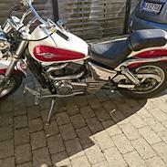 Suzuki vz 800