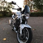 Suzuki SV1000N