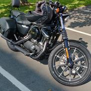 Harley Davidson XL883N