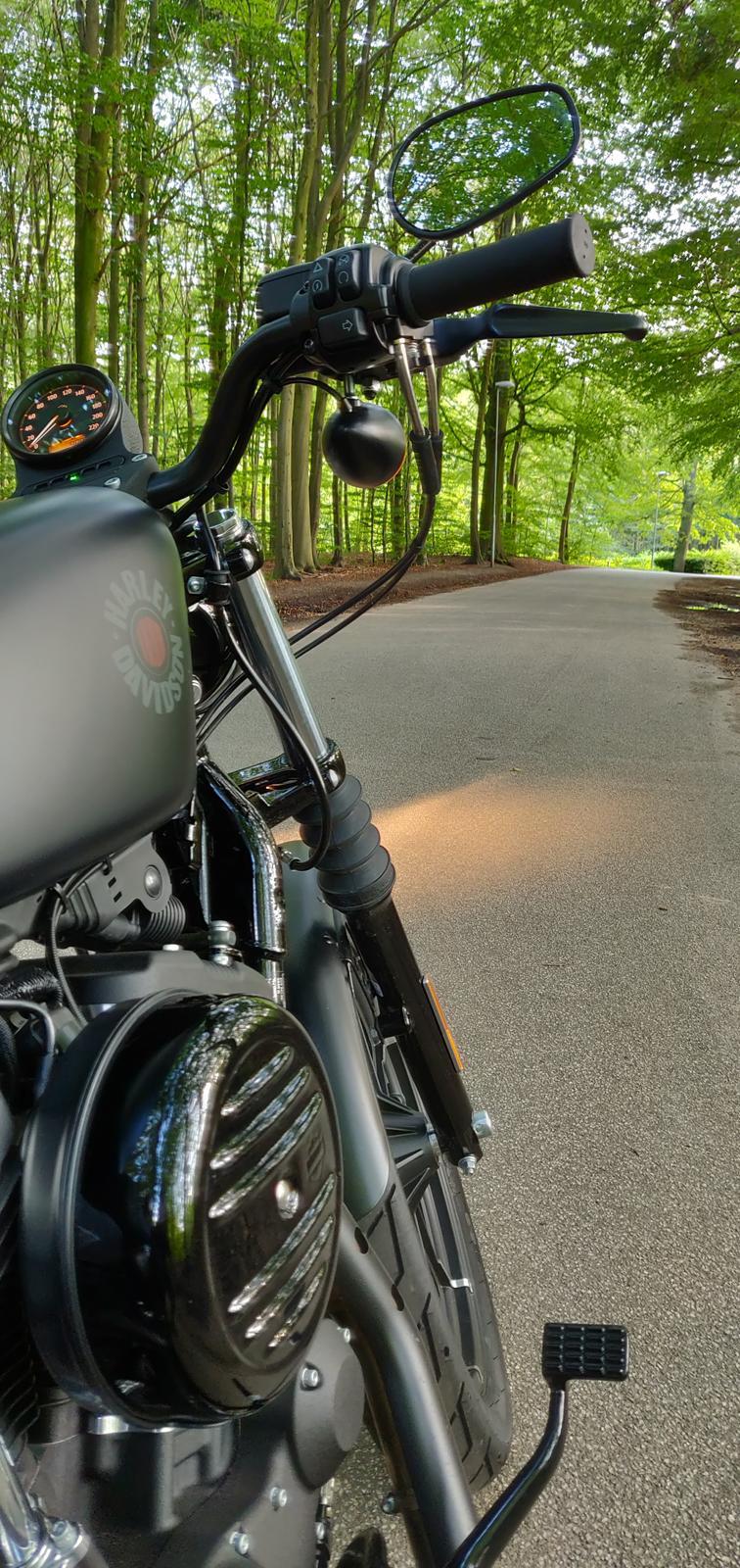 Harley Davidson XL883N billede 2