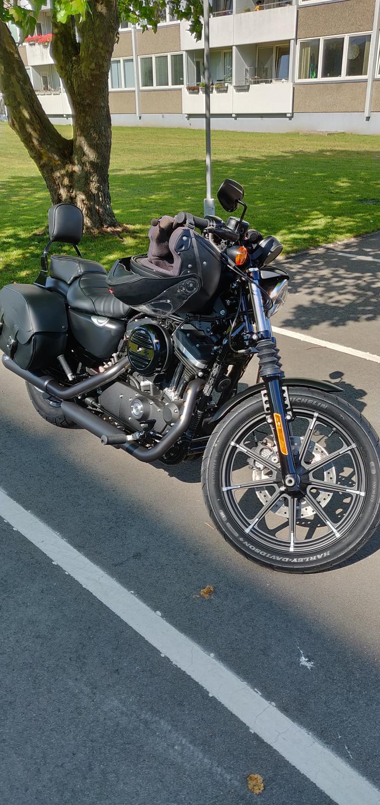 Harley Davidson XL883N billede 5