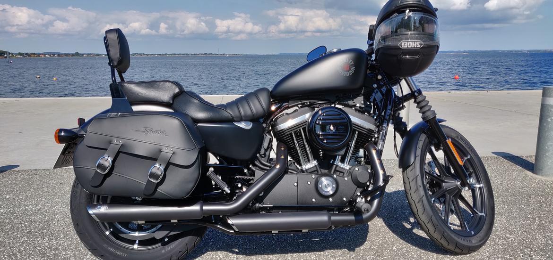 Harley Davidson XL883N billede 4
