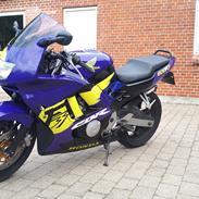 Honda CBR 600 F3 (F2.5)
