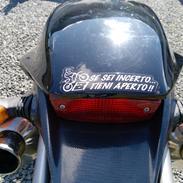 Ducati Monster 1000 DSie