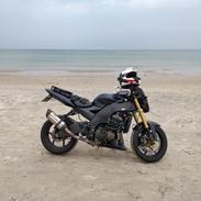 Kawasaki ZX10R - Ninja