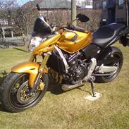 Honda cb 600f hornet Rizoma
