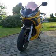 Yamaha FZ6 (solgt)