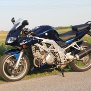 Suzuki sv1000s