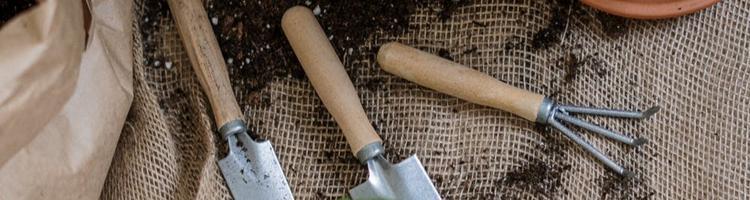 Sådan sikrer du din have over vinteren