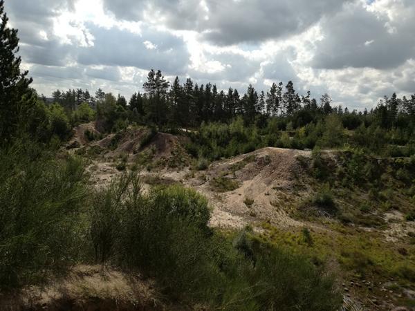 SV: Trail & Crawl Hyggedag/lød13/10