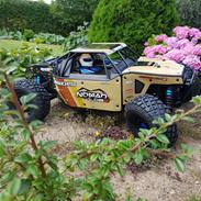 Buggy team associated Nomad DB8