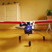 Fly Seagull Bommerang
