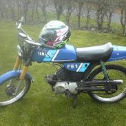 Yamaha fs-1 2gear (SOLGT)
