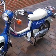 Suzuki fz50 SOLGT