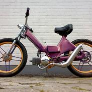 Puch next2no1