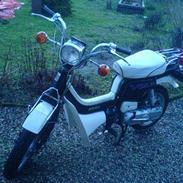 Suzuki Fz50-Byttet til Tyffe :'(