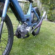 Puch maxi k racing  ($olgt)
