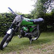 Yamaha FS 1