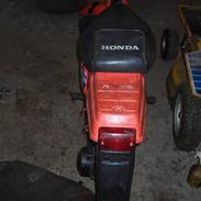 Honda Wallaroo Solgt