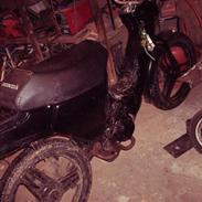 Honda wallaro *solgt*