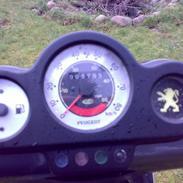 Peugeot SpeedFight 2 (SOLGT)