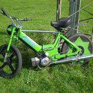 Puch Maxi bytttet