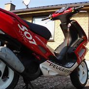 Peugeot Speedfight 2 ( SOLGT )