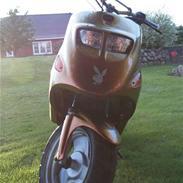 Kreidler easy rider