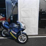 Yamaha tzm 50 r