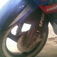 Giantco Sprint Sport (Olga)