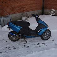 Benelli 491