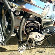 MiniBike Devil's Bike