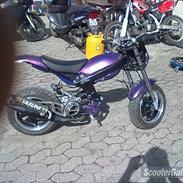 Suzuki Street Magic