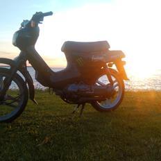 Honda Wallaroo (Trofast)
