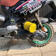 PGO Pmx sport moped warriors