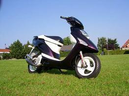 Honda Sfx //kameleon\\    SOLGT