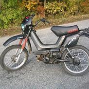 Yamaha Sting SG50
