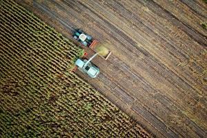 Fem  gode gaveidéer til landmænd eller maskinførere