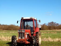 International Harvester 844XL