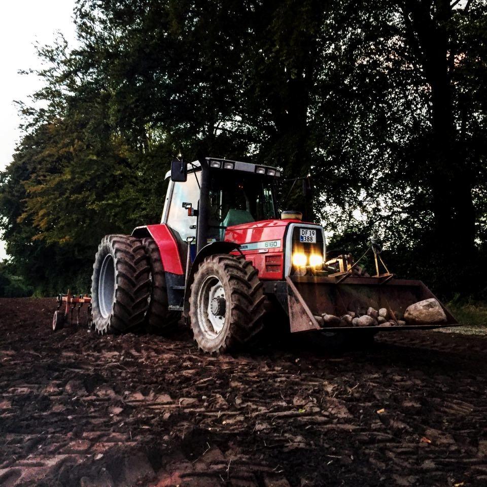 Massey Ferguson 6160 - 1997 - fantastisk traktor at køre  n